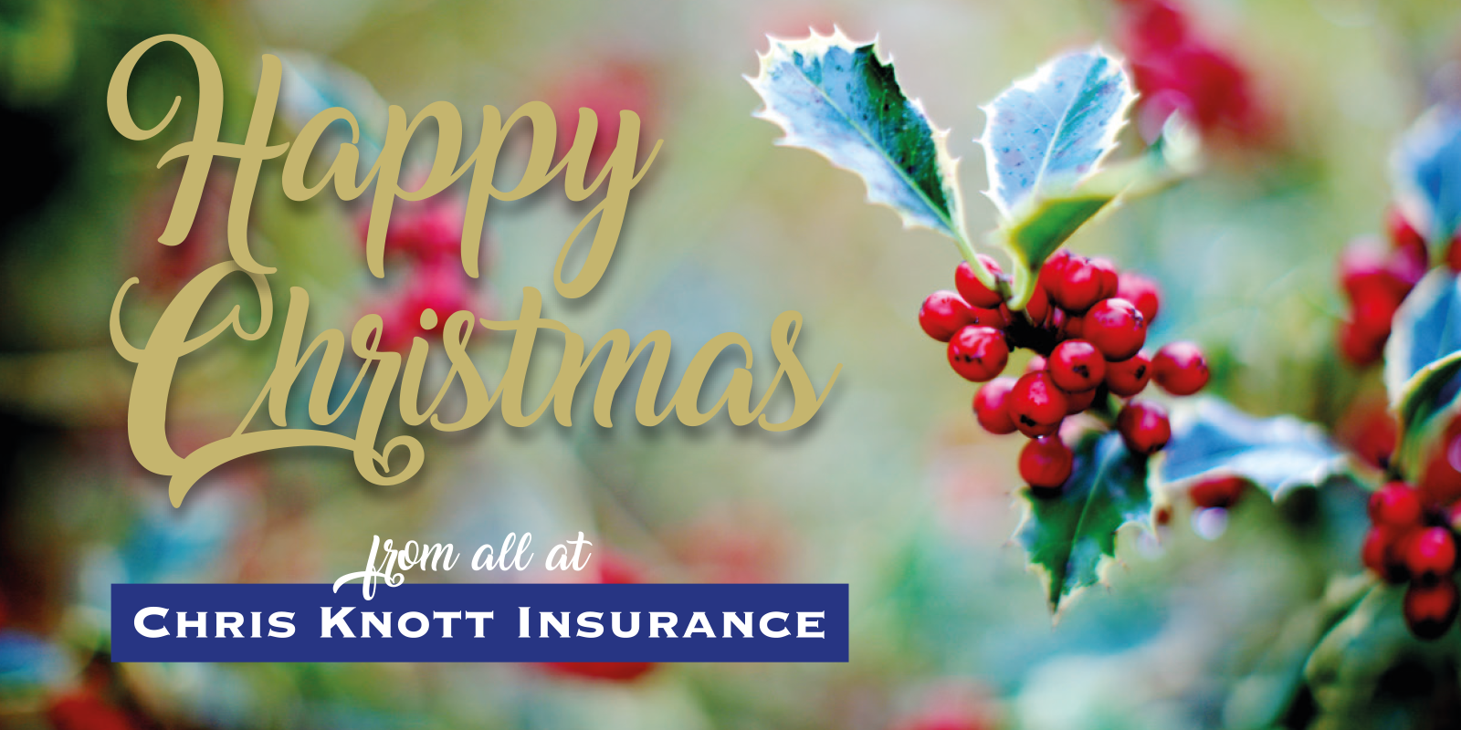 Happy Christmas from all at Chris Knott Insurance